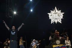 Calle 13 i konsert Royaltyfri Bild