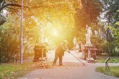 Calle limpia de Yardman de las hojas de otoño caidas Foto de archivo