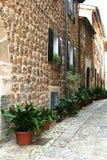 Calle mediterránea rústica con las plantas Imágenes de archivo libres de regalías