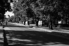 Calle residencial con los árboles, Livingstone, Zambia fotografía de archivo