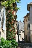 Calle romántica con las rosas en ciudad francesa vieja Fotos de archivo