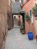 Calle secundaria reservada Imagen de archivo libre de regalías