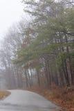 Calle suburbana de niebla Imágenes de archivo libres de regalías