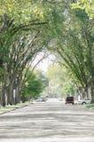 Calle suburbana del Mid West en los Estados Unidos Imagenes de archivo