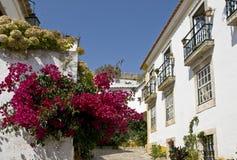 Calle típica en Obidos, con las flores Imagen de archivo libre de regalías
