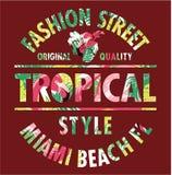 Calle tropical de la moda de Miami del estilo Foto de archivo