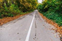 Calle vacía del otoño Foto de archivo libre de regalías