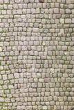 Calle vieja de la piedra del adoquín Imagen de archivo libre de regalías