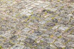 Calle vieja de la piedra del adoquín con el musgo Foto de archivo
