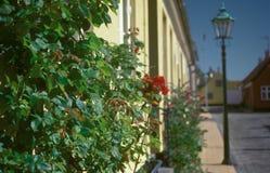 Calle vieja y una linterna i Roenne, Bornholm en Dinamarca fotos de archivo