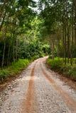 Calle y camino. Foto de archivo