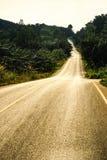 Calle y camino. Fotografía de archivo libre de regalías