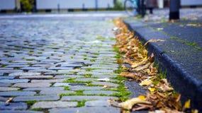 Calle y hojas del ladrillo en otoño imágenes de archivo libres de regalías