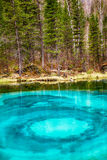 So-called blue geyser lake in Altay mountains Stock Photography