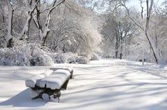 Callejón abandonado nevado en el parque del invierno Banco en la nieve entre los árboles hermosos fotos de archivo libres de regalías