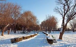 Callejón asoleado del invierno fotos de archivo