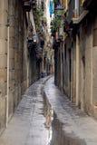 Callejón - Barcelona Foto de archivo libre de regalías