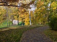 Callejón colorido del parque de la visión en otoño Foto de archivo