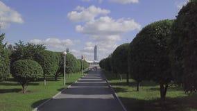 Callejón con los árboles en la ciudad almacen de metraje de vídeo