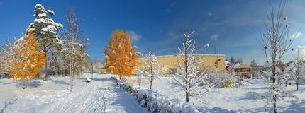Callejón de árboles, Novokuznetsk Siberia, Rusia del invierno Imágenes de archivo libres de regalías