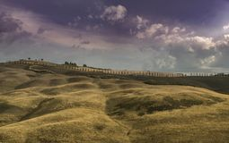 Callejón de Cypress Imagen de archivo