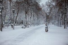 Callejón de la nieve con las luces de calle Fotos de archivo libres de regalías
