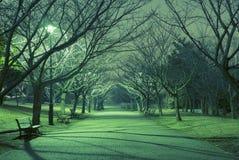 Callejón de la noche Fotos de archivo libres de regalías