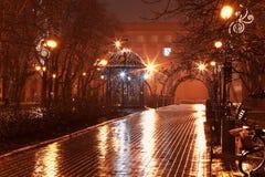 Callejón de la noche en el parque de la ciudad Imagen de archivo libre de regalías