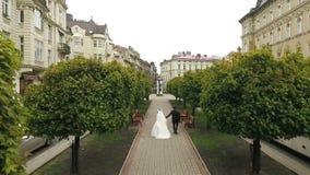Callejón de los árboles de los pares de la boda que camina almacen de video