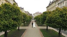 Callejón de los árboles de los pares de la boda que camina metrajes