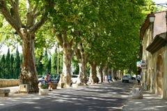 Callejón de los árboles planos en Luberon foto de archivo