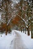 Callejón del invierno Fotos de archivo libres de regalías