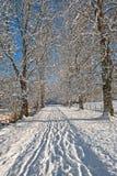 Callejón del invierno Fotografía de archivo libre de regalías