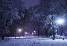 Callejón del invierno en la noche Fotos de archivo libres de regalías