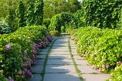 Callejón del jardín Imagen de archivo libre de regalías
