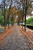 Callejón del otoño Imagen de archivo