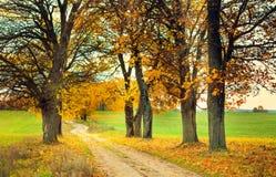 Callejón del otoño Imágenes de archivo libres de regalías