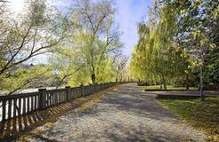 Callejón del otoño en el parque viejo en la ciudad siberiana de Omsk imagenes de archivo