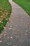 Callejón del parque Imagen de archivo libre de regalías