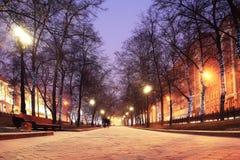 Callejón del parque de la ciudad Foto de archivo libre de regalías