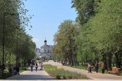 Callejón del parque de la ciudad en un día de verano soleado fotografía de archivo libre de regalías