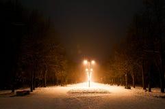 Callejón del parque de la noche Imagenes de archivo