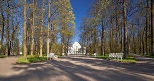 Callejón del parque de la primavera Imagen de archivo libre de regalías