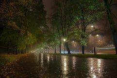 Callejón del parque en la noche Imagenes de archivo