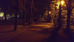 Callejón del parque del verano en la noche metrajes