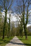 Callejón en el parque, Baviera Fotografía de archivo