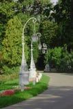 Callejón en el parque de la ciudad Imagenes de archivo