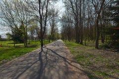Callejón en el parque de la ciudad de Burgas en primavera Foto de archivo libre de regalías