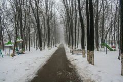 Callejón en el parque en el centro de Belgorod Fotografía de archivo