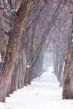 Callejón en nevoso un día Fotografía de archivo libre de regalías